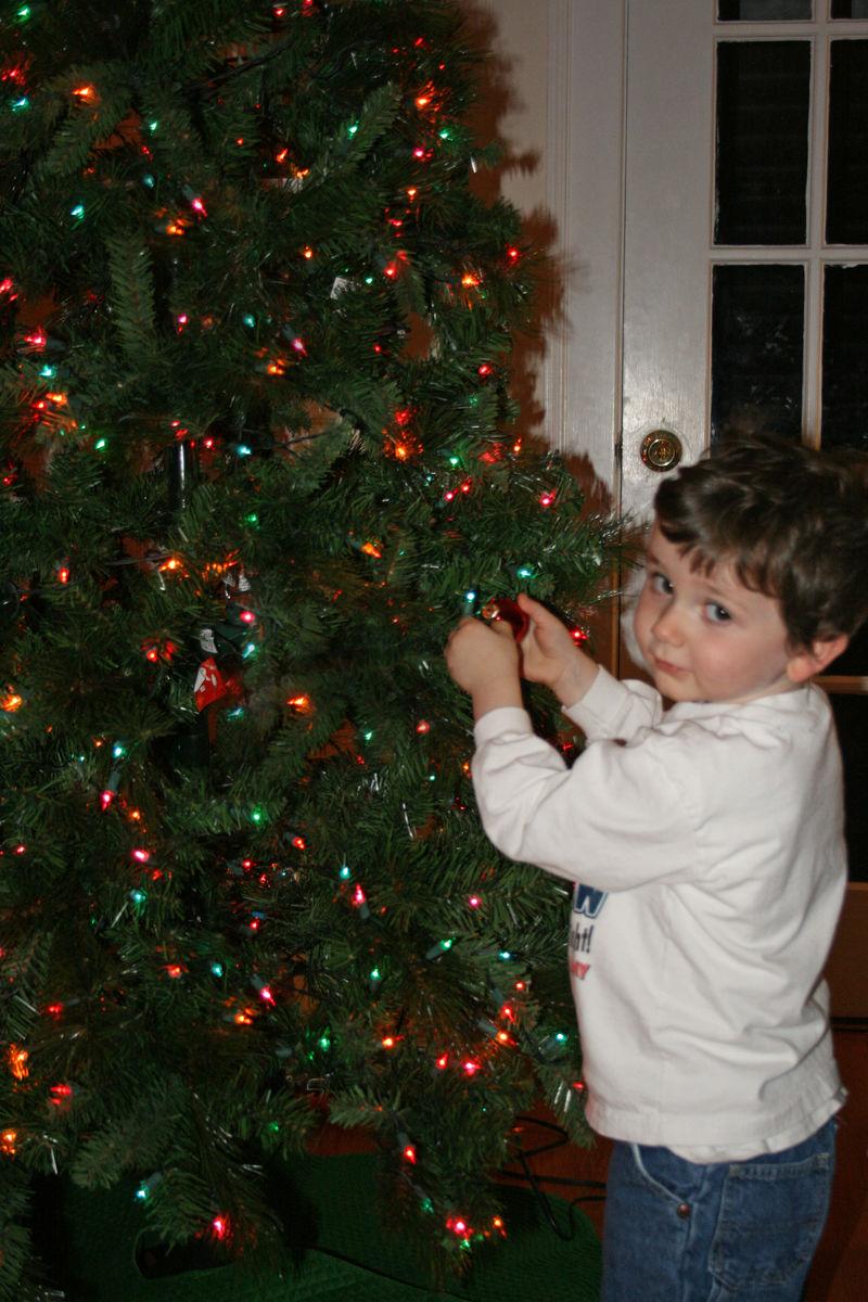 Sebastian trims the tree