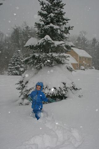 Sebastian in the snow