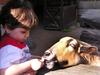 Feeding_the_goat_122607