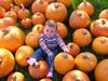 Pumpkin_patch_edited2